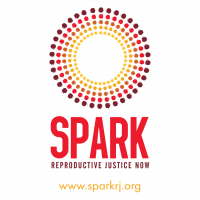Spark reproductive justice now logo