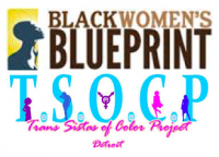 Black Women's Blueprint & Trans Sistas of Color Project grantee profile