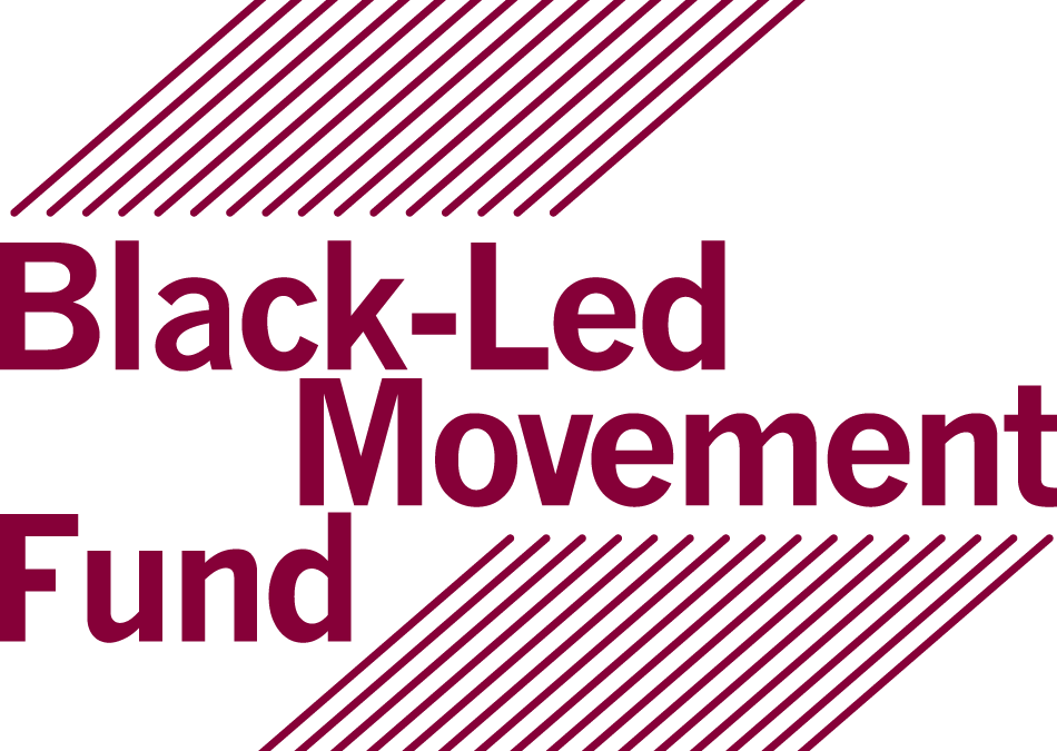 Read About the Visionary, Power-Building Work Supported by the Black-Led Movement Fund