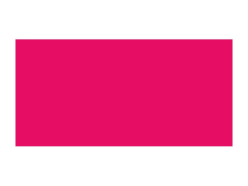 Immigration Litigation Fund